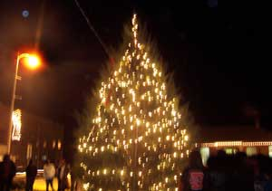 Noxubee Christmas Tree